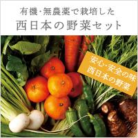 西日本野菜宅配セット